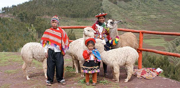 Perhe Perussa