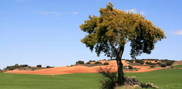Espanjan Castilla la Mancha
