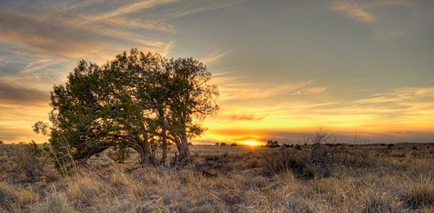 New Mexicossa monipuolinen kulttuuri