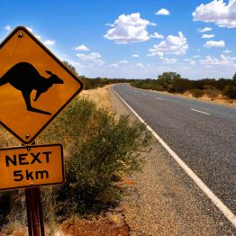 Working Holiday australiassa