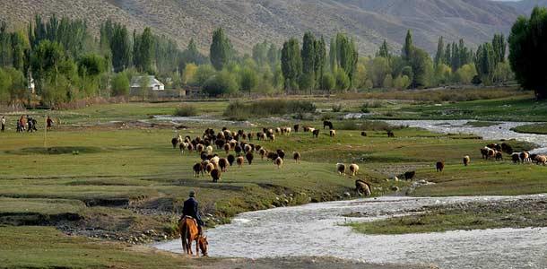 Kirgisiassa on edelleen vahva paimentolaiskulttuuri