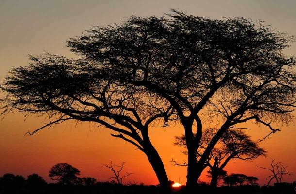 zimbabwe-auringolasku-Flickr-Jason-Wharam