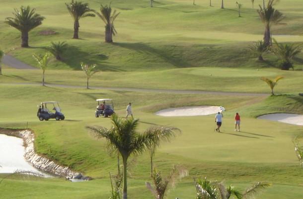 Golfia Gran Canarialla