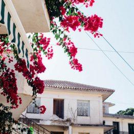 Zakinthos, Kreikka
