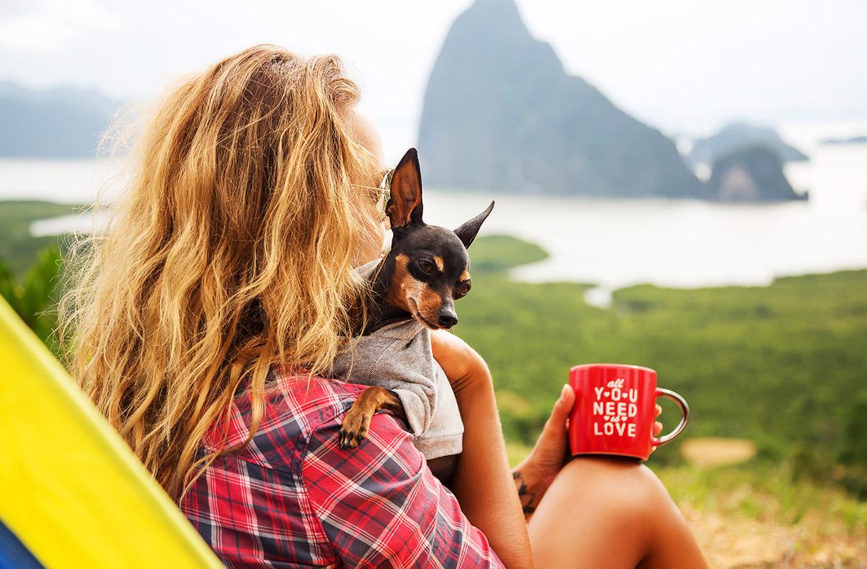 Lemmikin kanssa matkustaminen