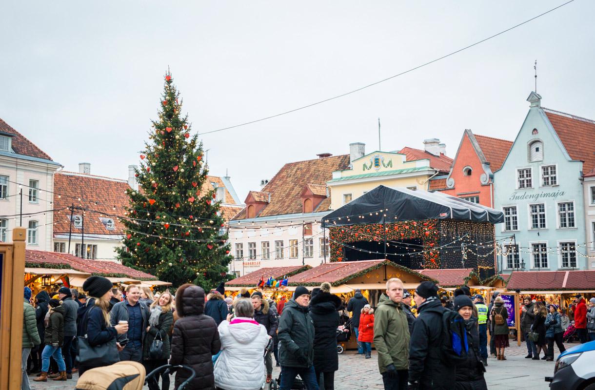 Tallinnan joulutori, Viro