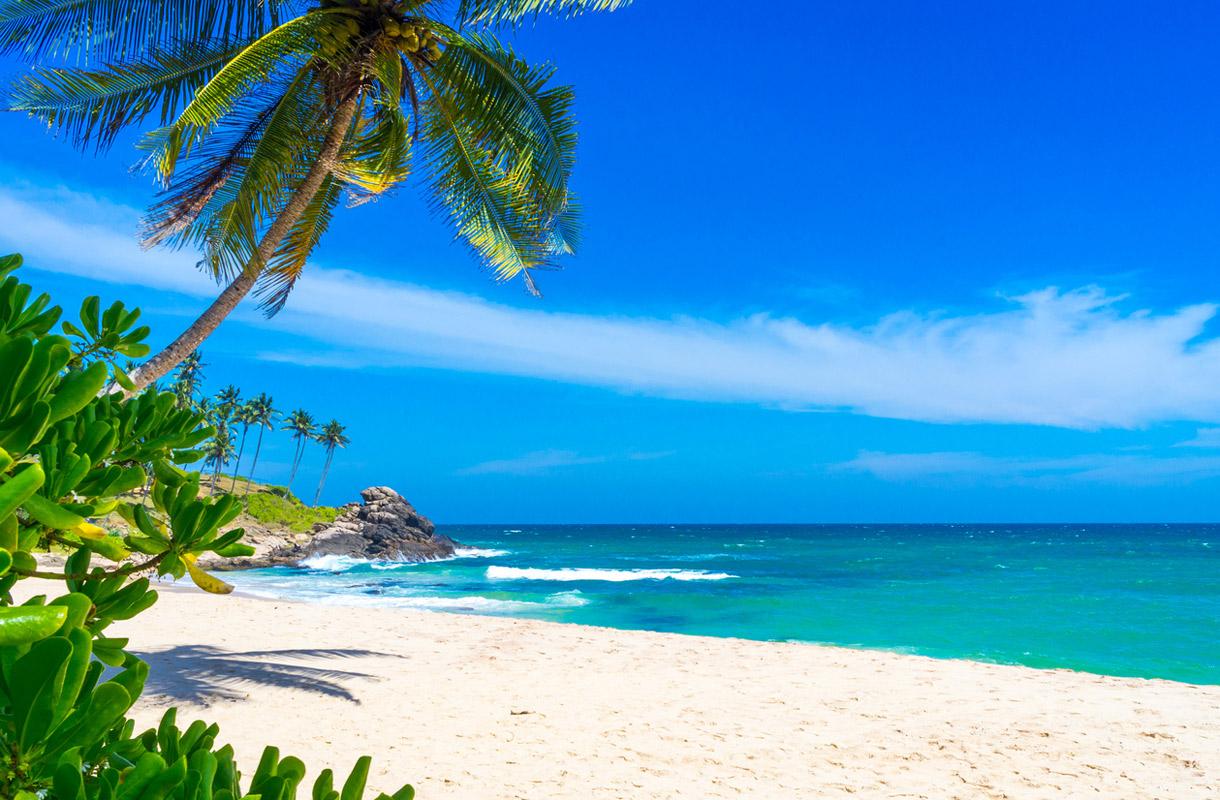 Sri Lankan ranta